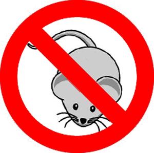 no-mouse